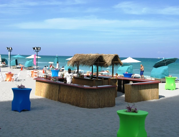 Tropical Thatched Tiki Bar with Bamboo Woven Top 20ft x 20ft